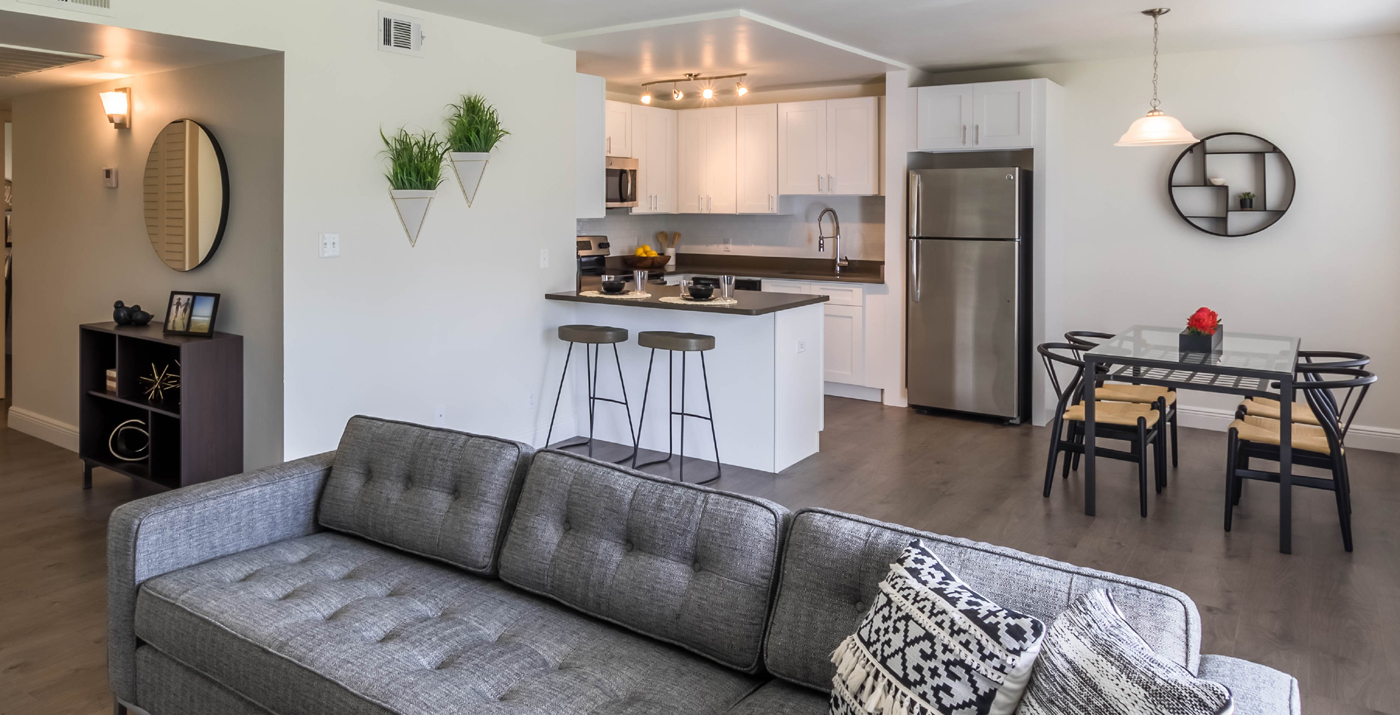 Innovo Living On Atlantic Pet Friendly Apartments In